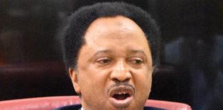 Shehu Sani lampoons Osinbajo